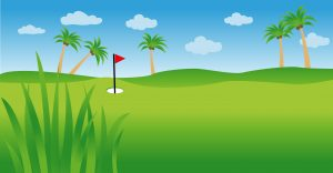 Find Golf Balls