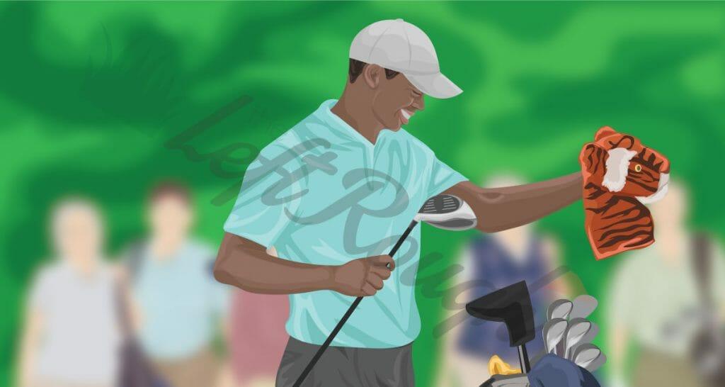 Best Golf Headcover